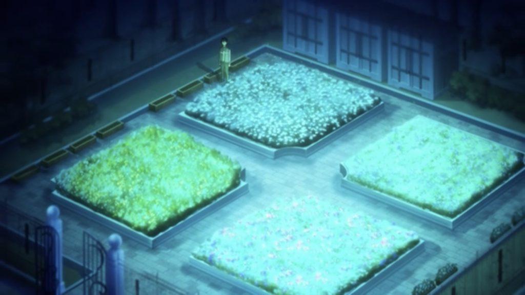 花壇の花が輝く画像