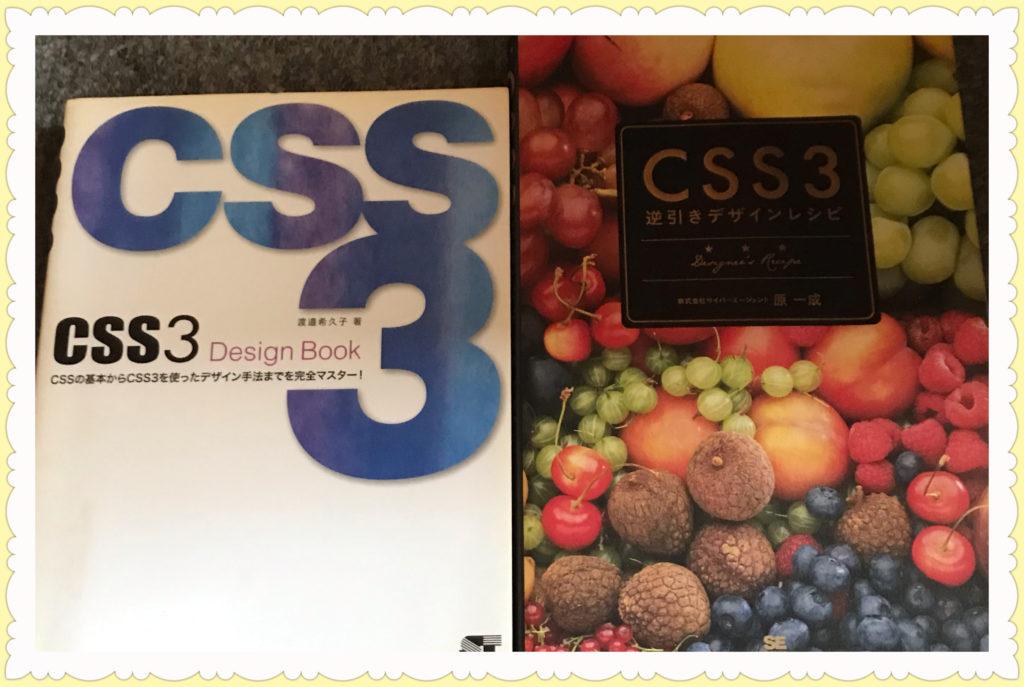 CSS スタイルシート書籍2冊画像